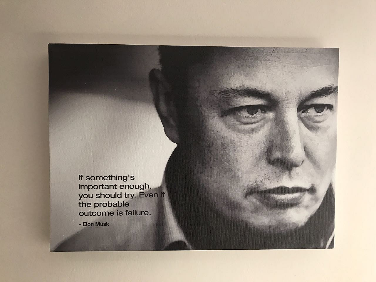 This is another artist canvas example by Vye Graphics, with an inspirational quote from Elon Musk.