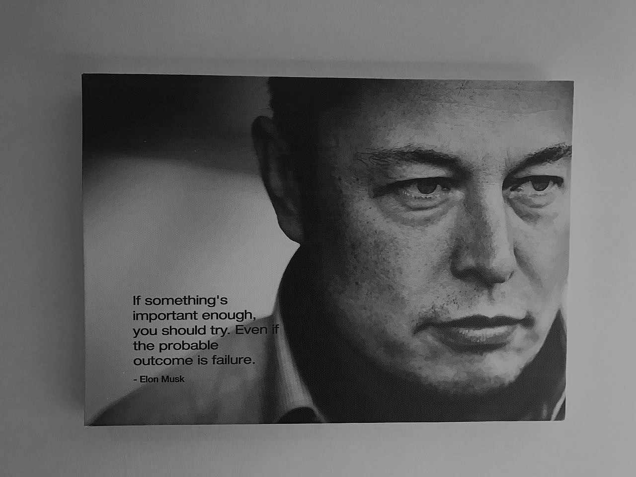 This is another artist canvas example by Vye Graphics, with an inspirational quote from Elon Musk