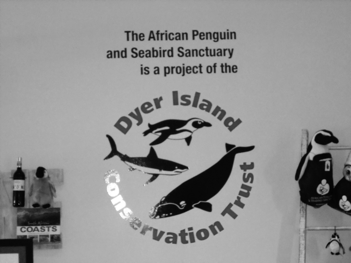 Cutout sign made by Vye Graphics for Dyer Island Conservation Trust.